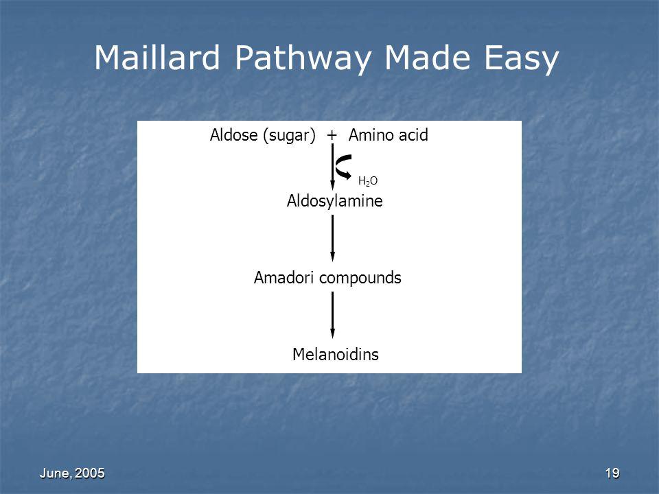 Maillard Pathway Made Easy
