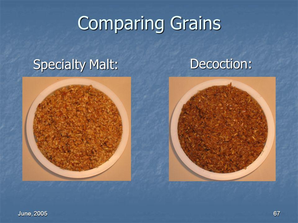 Comparing Grains Specialty Malt: Decoction: June, 2005