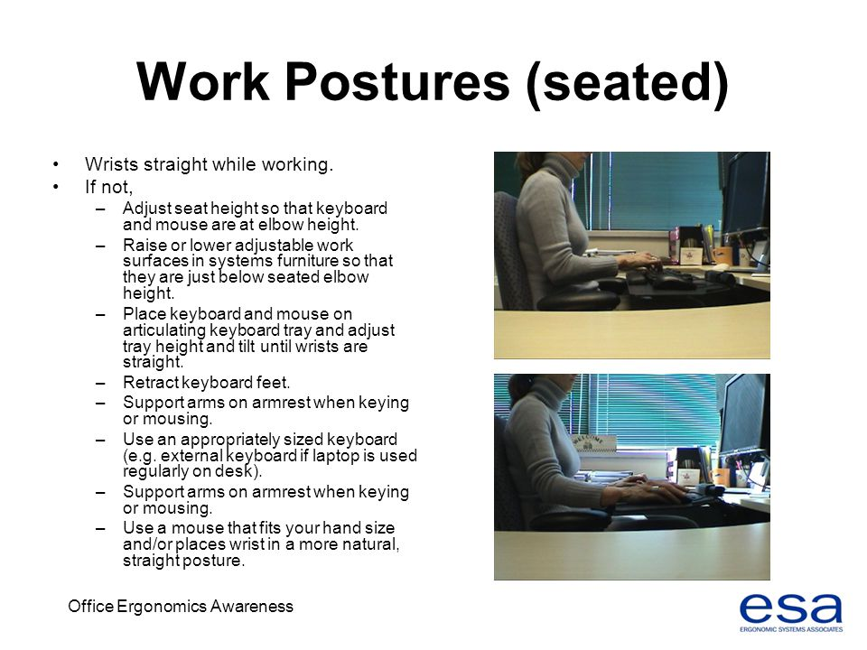 Work Postures (seated)
