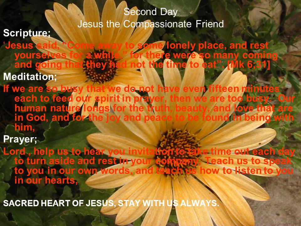 Second Day Jesus the Compassionate Friend