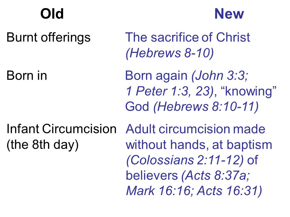 Old New Burnt offerings The sacrifice of Christ (Hebrews 8-10) Born in