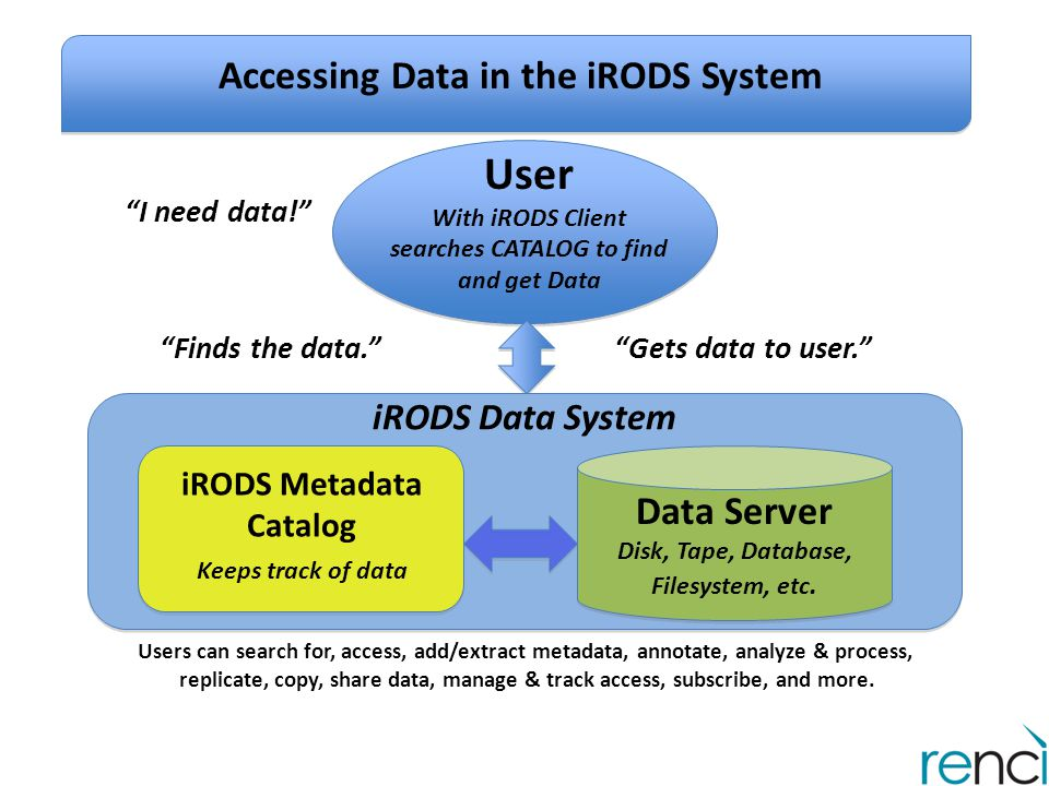 Accessing Data in the iRODS System