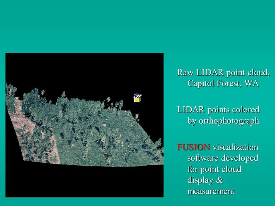Raw LIDAR point cloud, Capitol Forest, WA