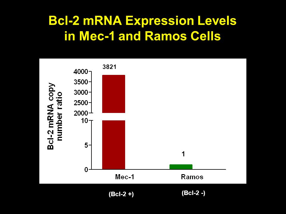 Bcl-2 mRNA Expression Levels in Mec-1 and Ramos Cells
