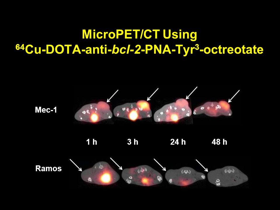 MicroPET/CT Using 64Cu-DOTA-anti-bcl-2-PNA-Tyr3-octreotate