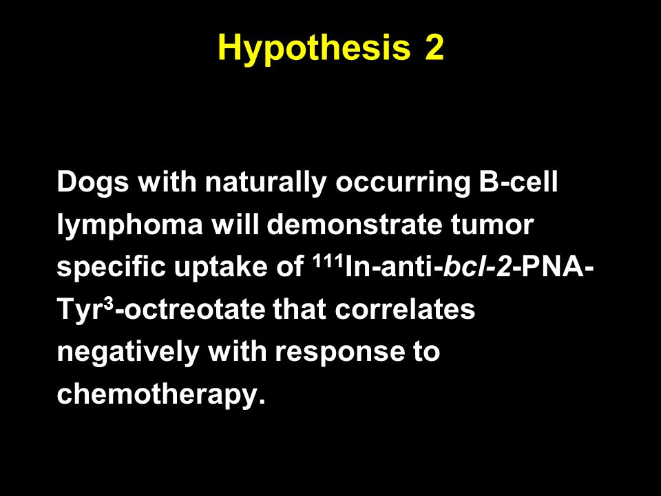 Hypothesis 2 Dogs with naturally occurring B-cell