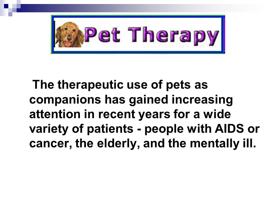 The therapeutic use of pets as companions has gained increasing attention in recent years for a wide variety of patients - people with AIDS or cancer, the elderly, and the mentally ill.