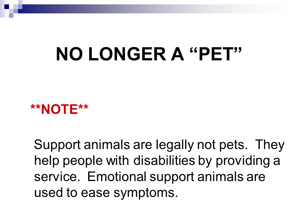 NO LONGER A PET **NOTE**