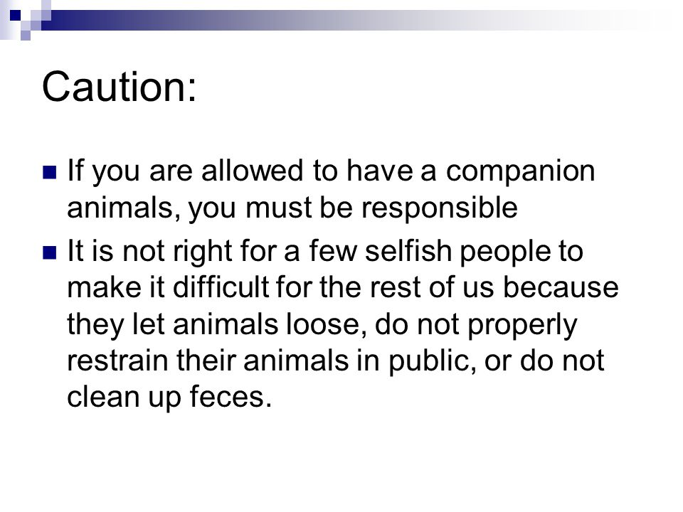 Caution: If you are allowed to have a companion animals, you must be responsible.
