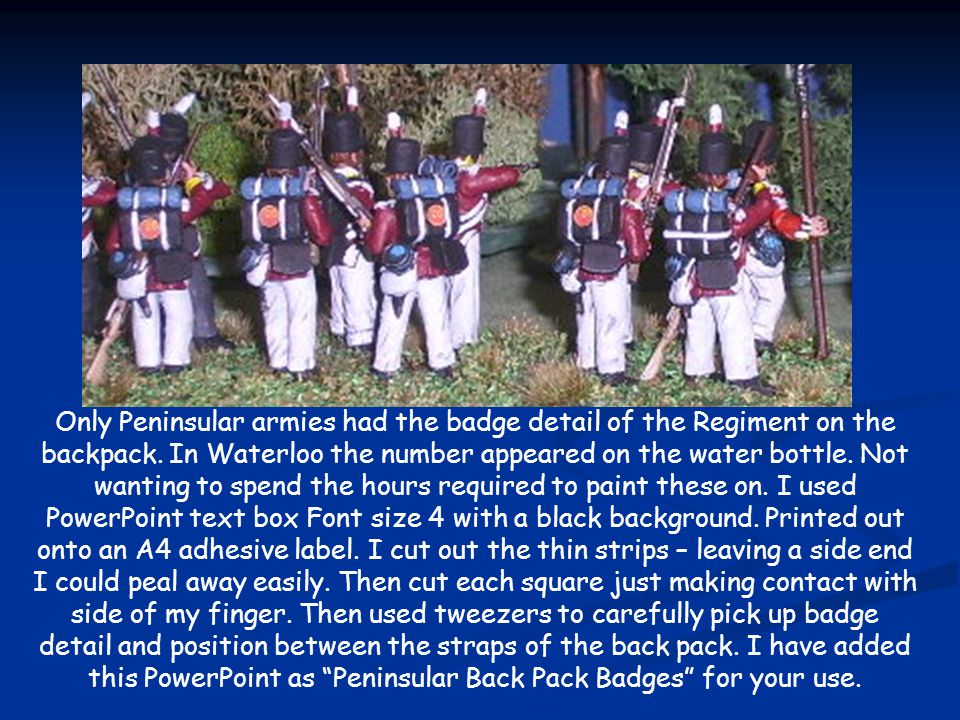 Only Peninsular armies had the badge detail of the Regiment on the backpack.