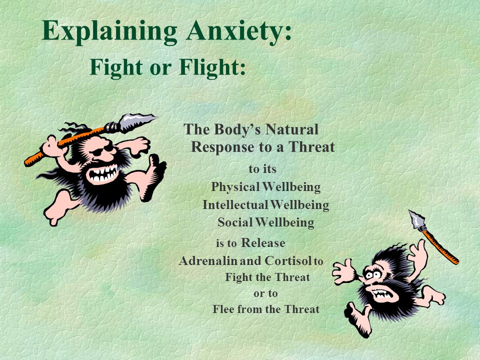 Explaining Anxiety: Fight or Flight:
