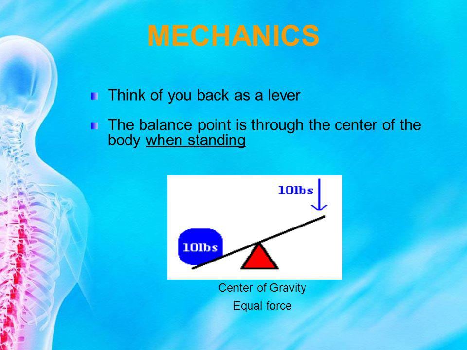 MECHANICS Think of you back as a lever