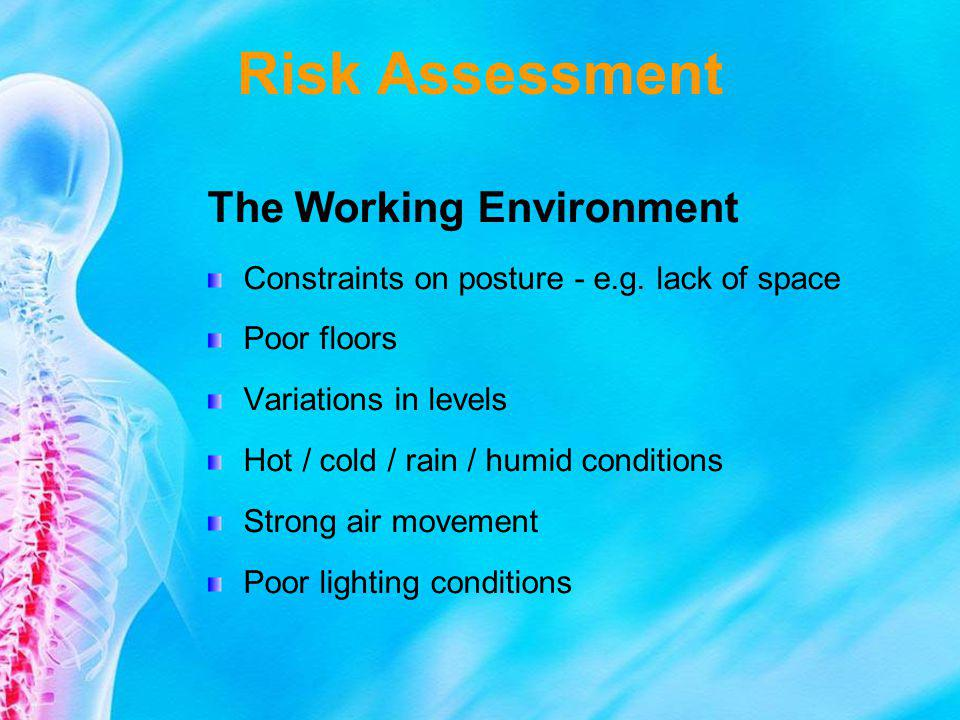 Risk Assessment The Working Environment