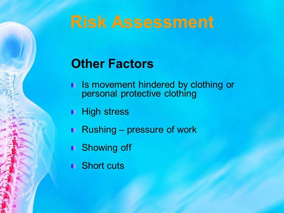 Risk Assessment Other Factors