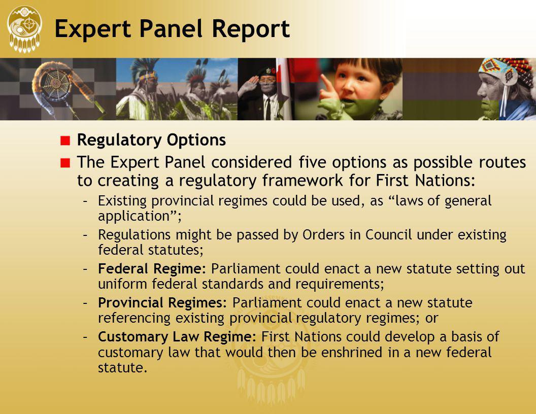 Expert Panel Report Regulatory Options