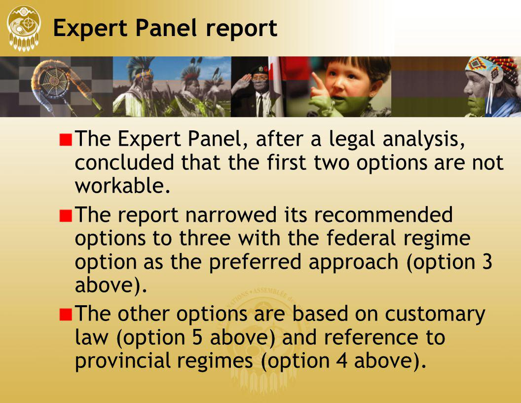 Expert Panel report The Expert Panel, after a legal analysis, concluded that the first two options are not workable.