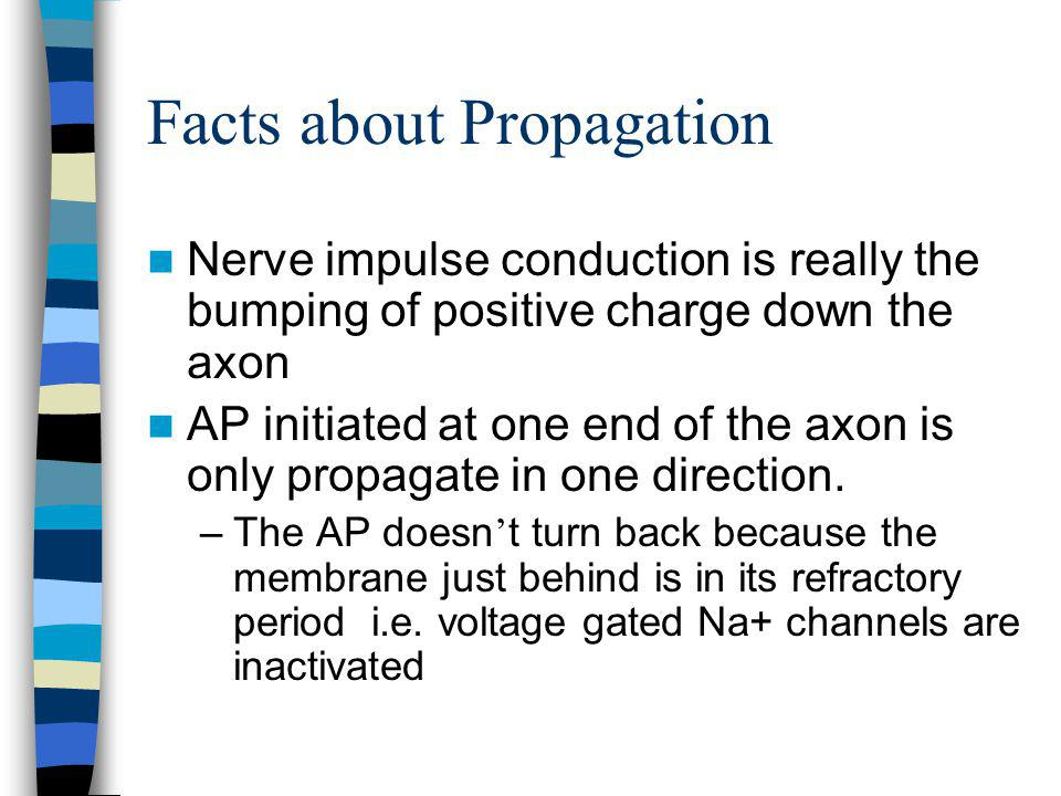 Facts about Propagation