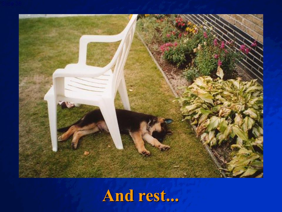 And rest...