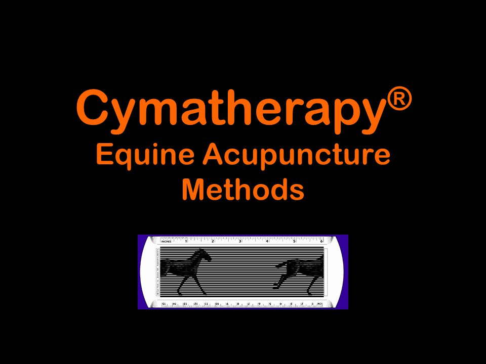 Cymatherapy® Equine Acupuncture Methods