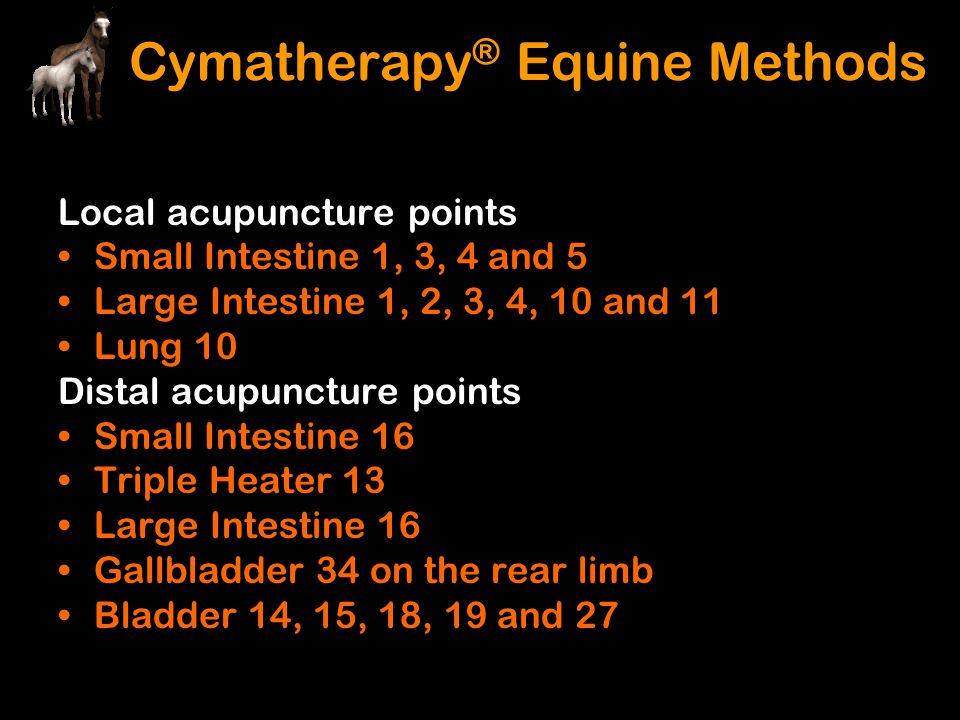 Cymatherapy® Equine Methods