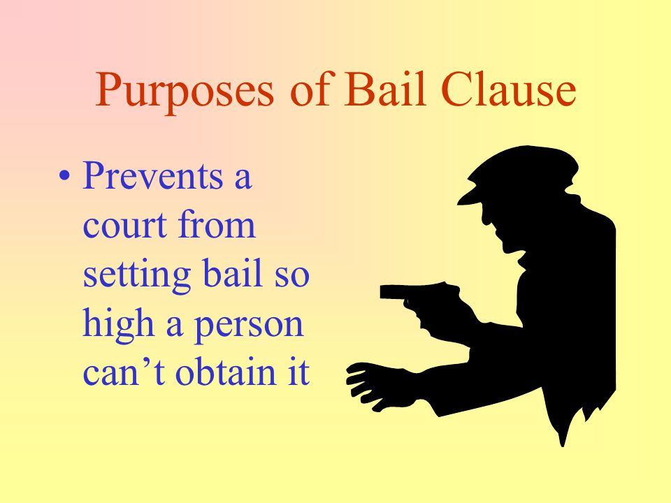 Purposes of Bail Clause