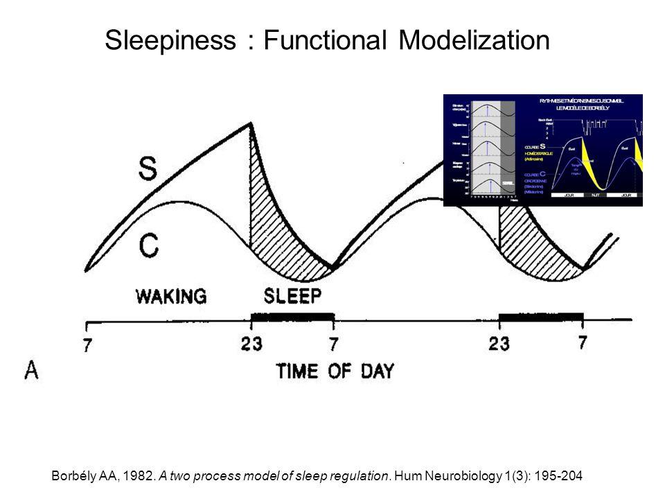Sleepiness : Functional Modelization