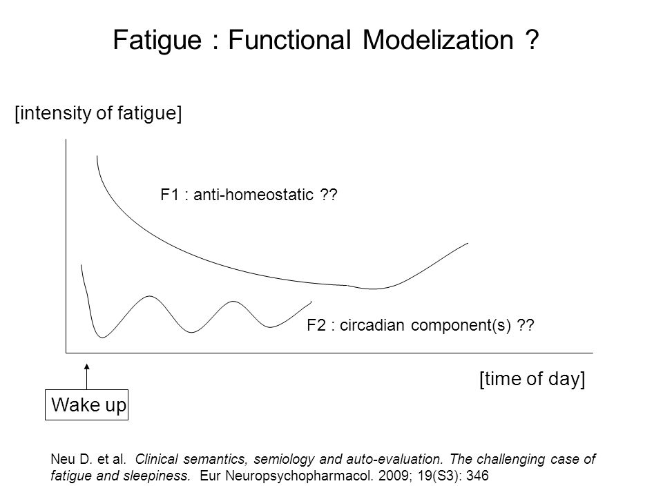 Fatigue : Functional Modelization