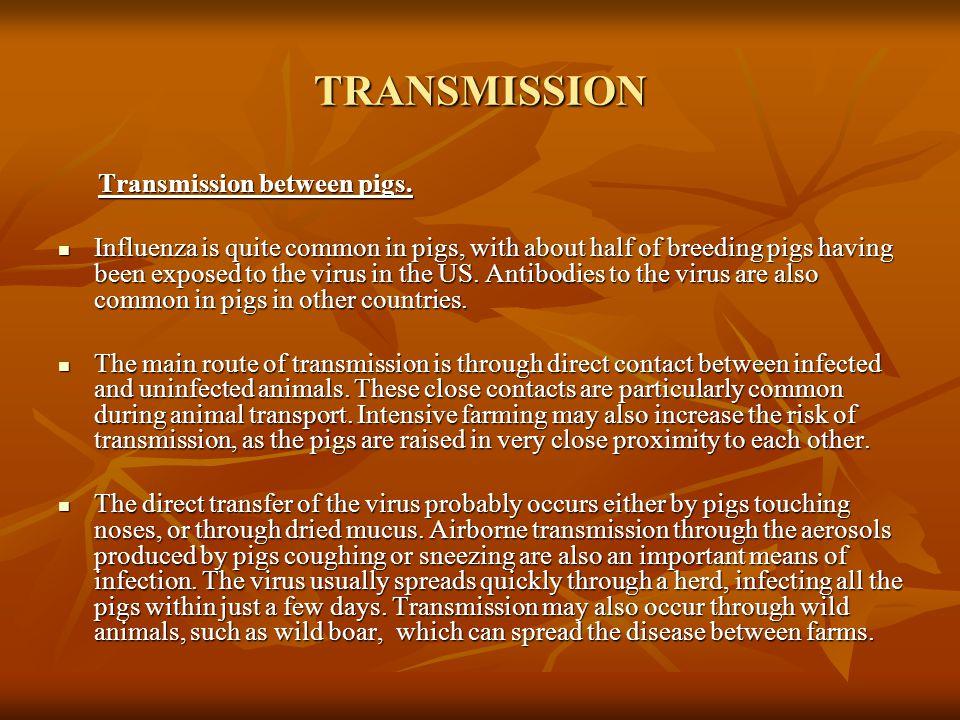 TRANSMISSION Transmission between pigs.