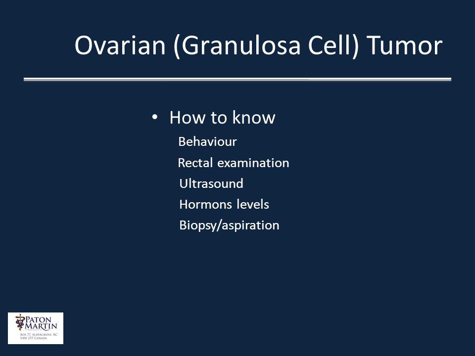 Ovarian (Granulosa Cell) Tumor