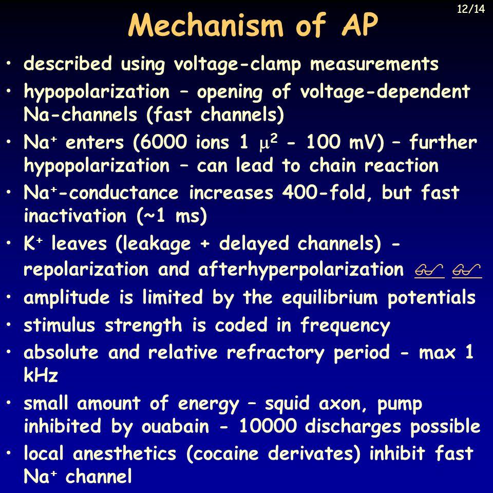 Mechanism of AP described using voltage-clamp measurements