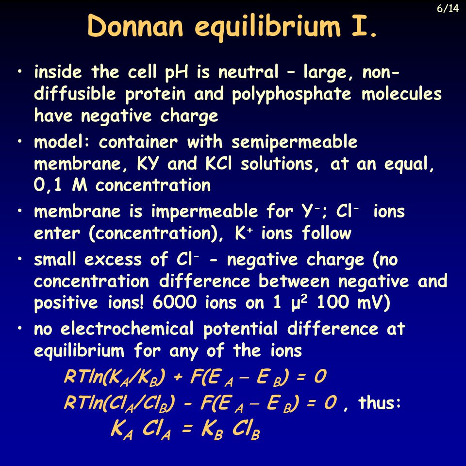 6/14 Donnan equilibrium I. inside the cell pH is neutral – large, non-diffusible protein and polyphosphate molecules have negative charge.