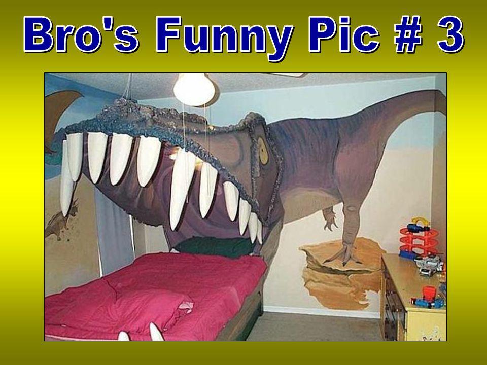 Bro s Funny Pic # 3