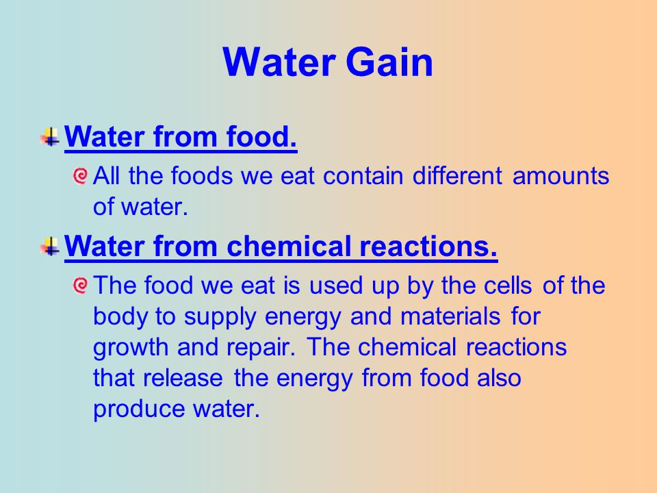 Water Gain Water from food. Water from chemical reactions.