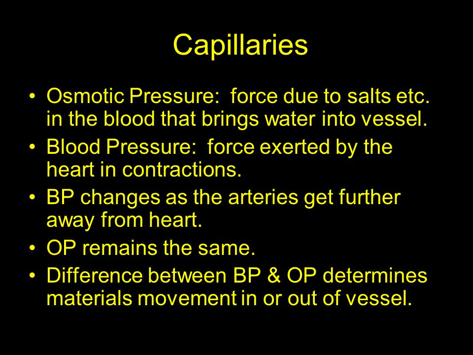 Capillaries Osmotic Pressure: force due to salts etc. in the blood that brings water into vessel.