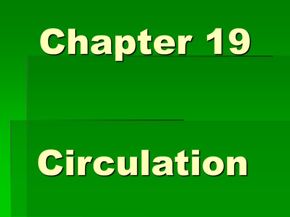 Chapter 19 Circulation