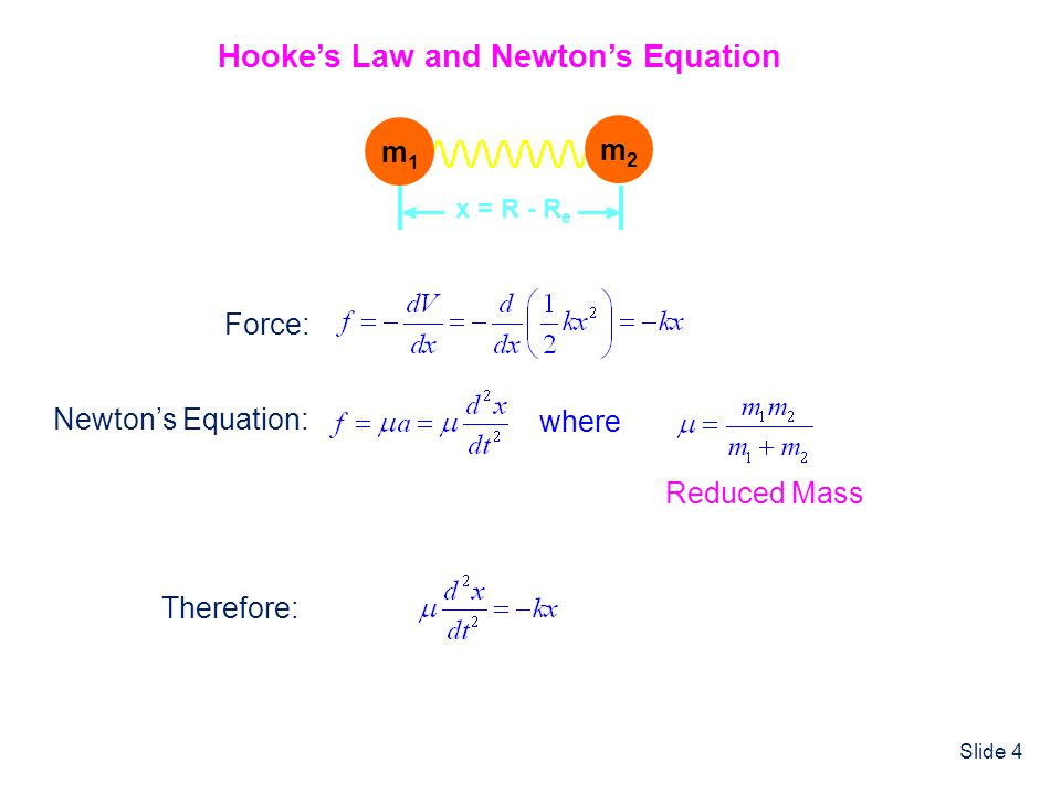 Hooke's Law and Newton's Equation