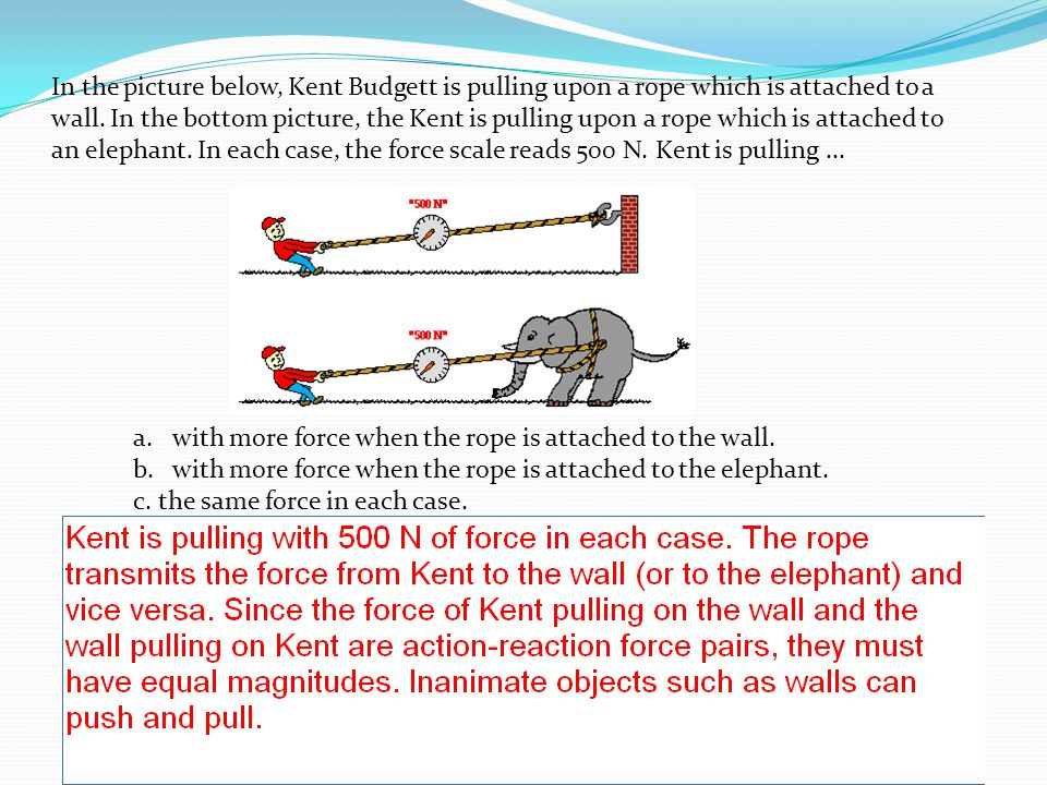 In the picture below, Kent Budgett is pulling upon a rope which is attached to a wall. In the bottom picture, the Kent is pulling upon a rope which is attached to an elephant. In each case, the force scale reads 500 N. Kent is pulling ...