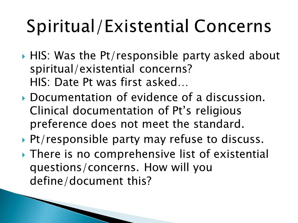 Spiritual/Existential Concerns
