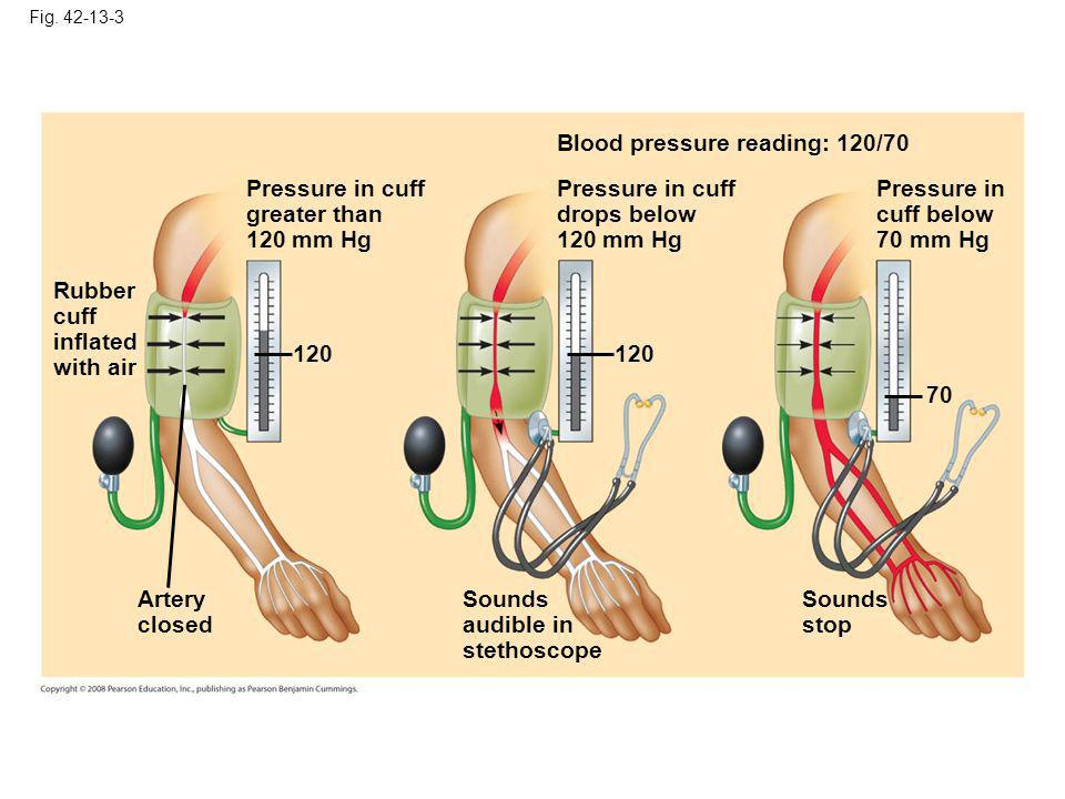 Blood pressure reading: 120/70