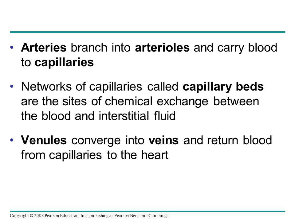 Arteries branch into arterioles and carry blood to capillaries