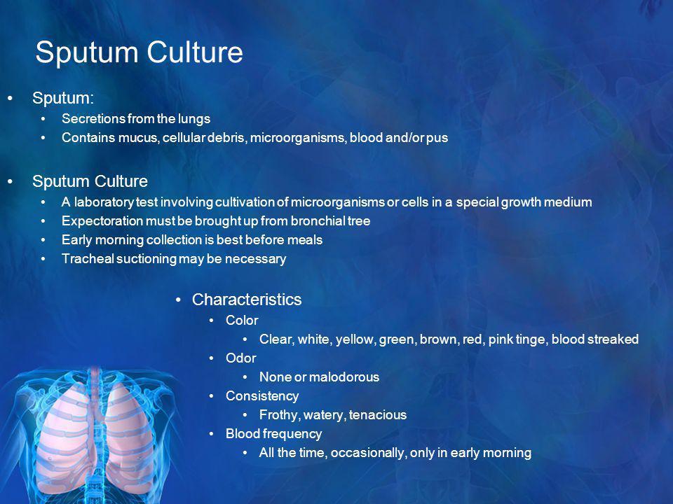 Sputum Culture Sputum: Sputum Culture Characteristics