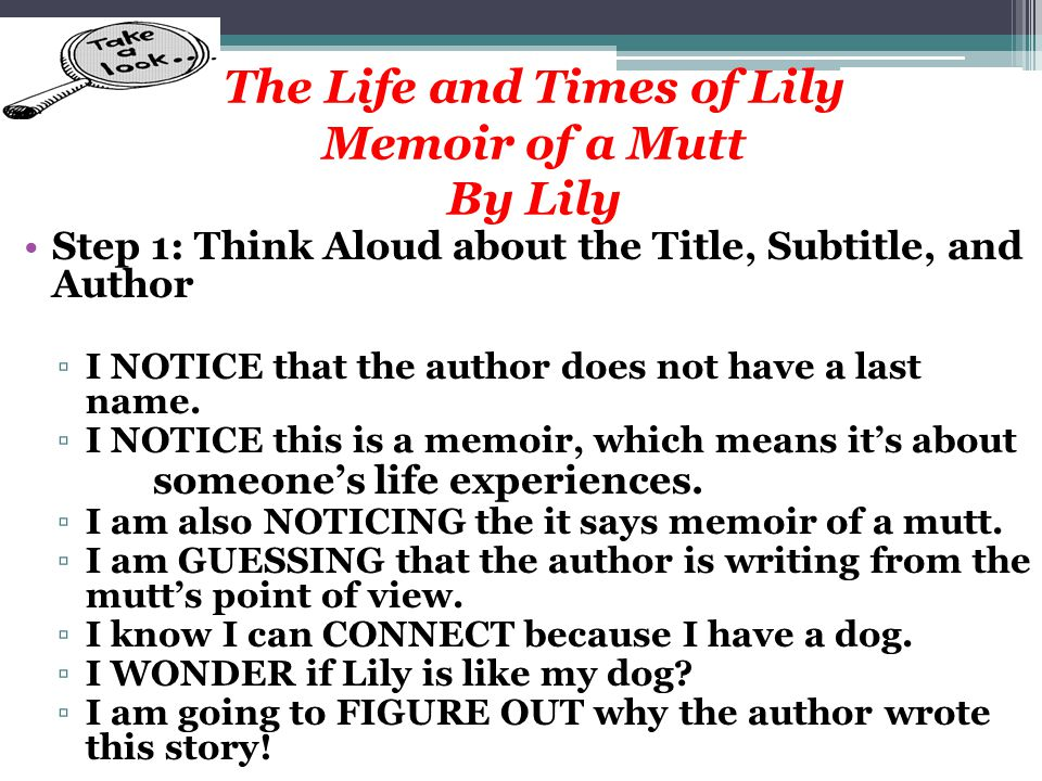 The Life and Times of Lily Memoir of a Mutt By Lily