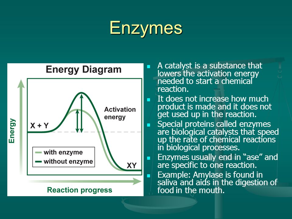 Enzymes A catalyst is a substance that lowers the activation energy needed to start a chemical reaction.