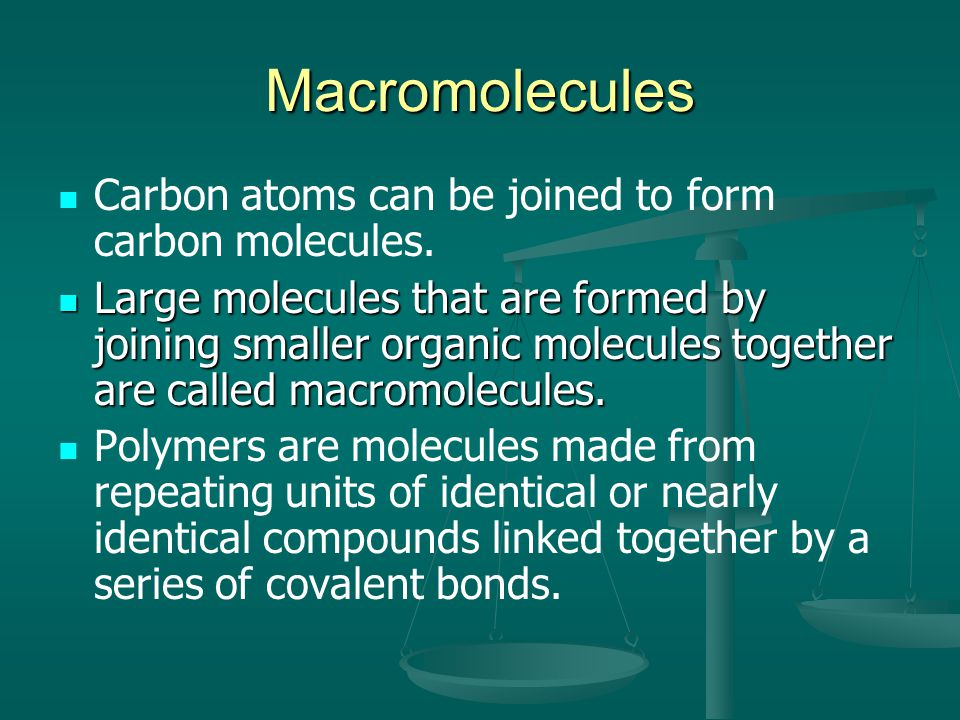 Macromolecules Carbon atoms can be joined to form carbon molecules.