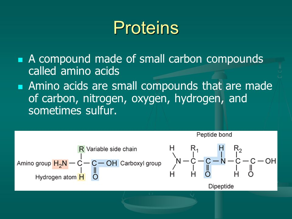 Proteins A compound made of small carbon compounds called amino acids