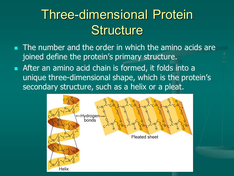 Three-dimensional Protein Structure