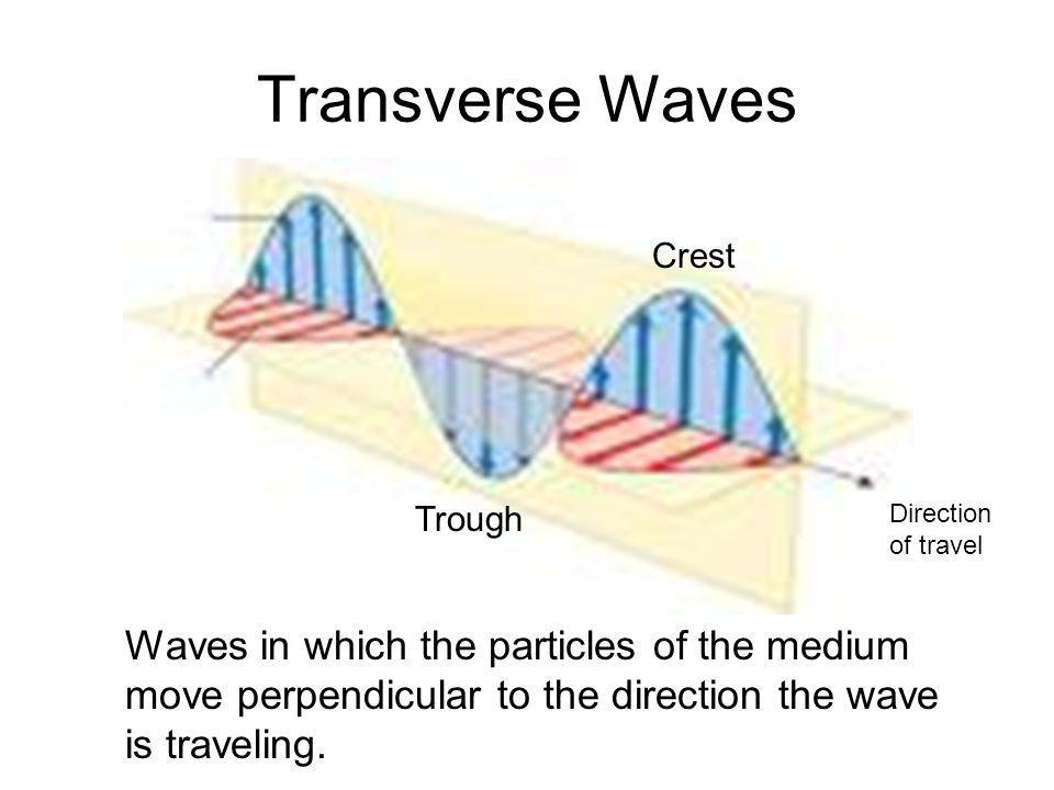 Transverse Waves Crest. Trough. Direction of travel.