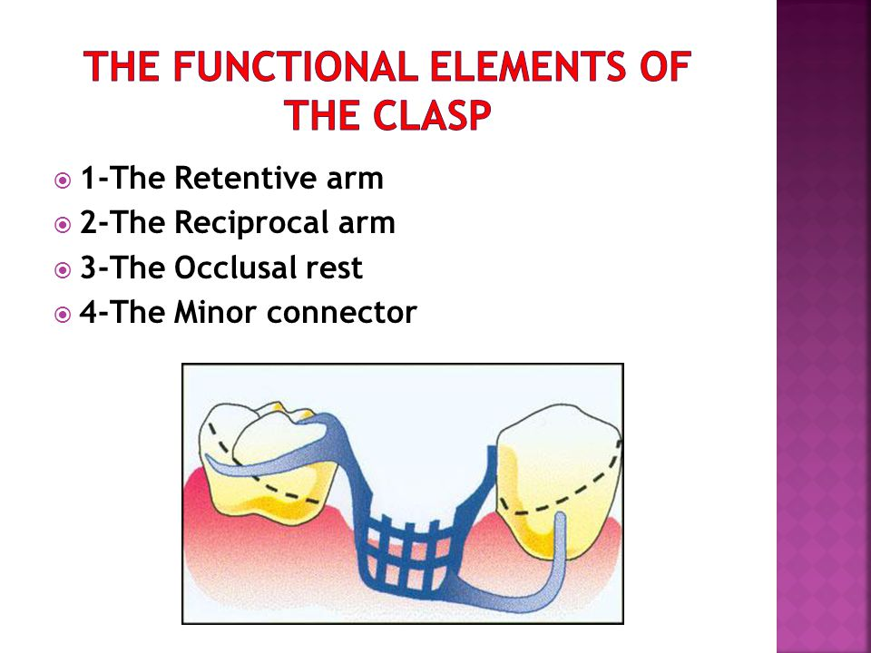 The functional elements of the clasp