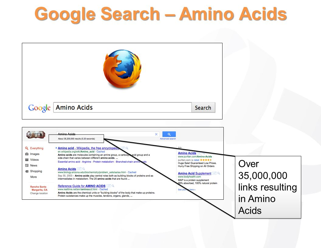 Google Search – Amino Acids