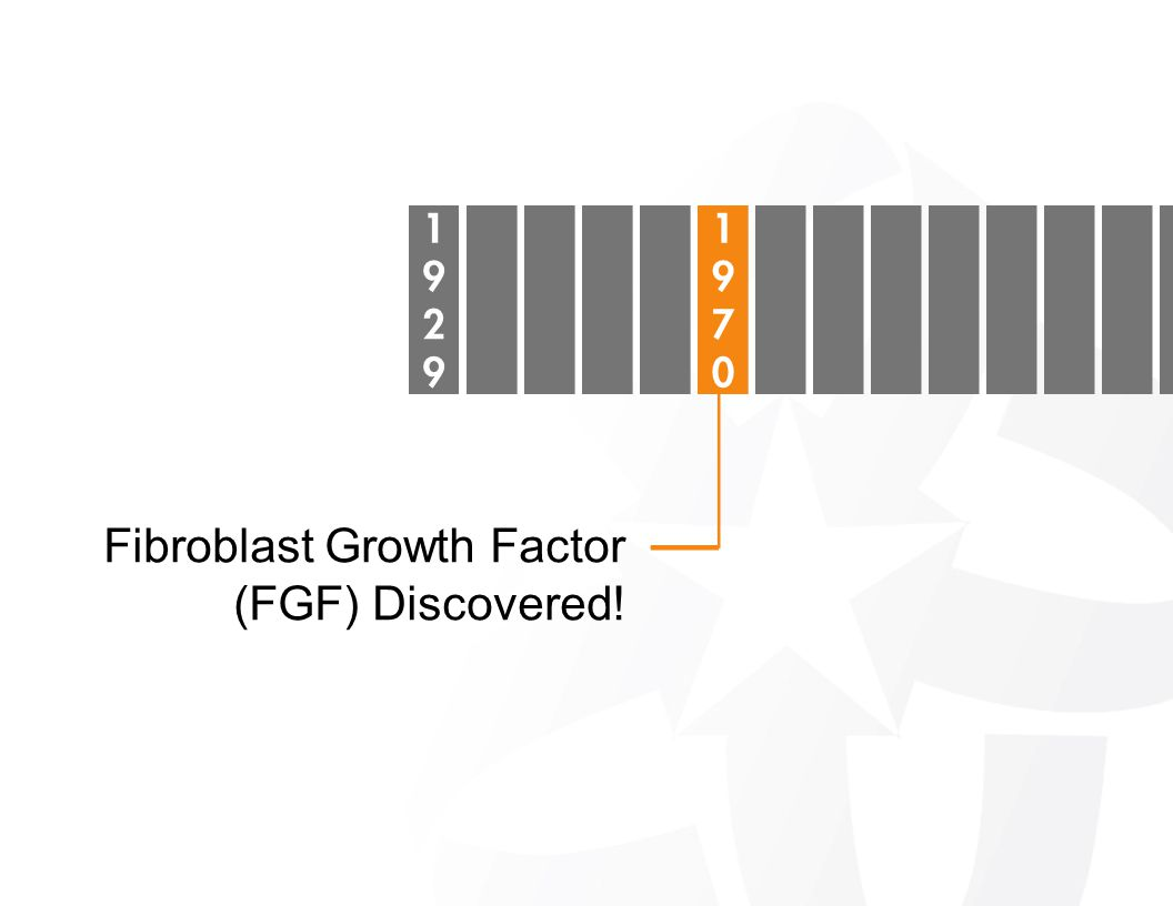 Fibroblast Growth Factor